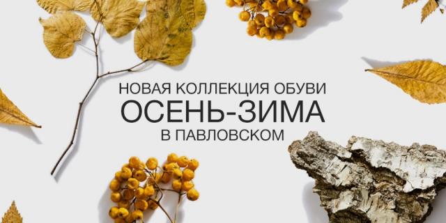 Новая коллекция обуви осень-зима в Павловском