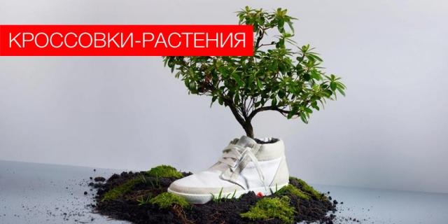Кроссовки-растения