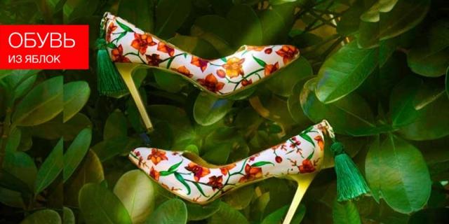 Обувь из яблок