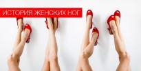 История женских ног